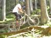 Testfahrt auf dem Lumberjack-Trail