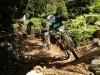 Duelle im Wald - Foto: Delius Klasing