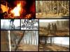 Tolle Aufnahmen aus Under The Trees