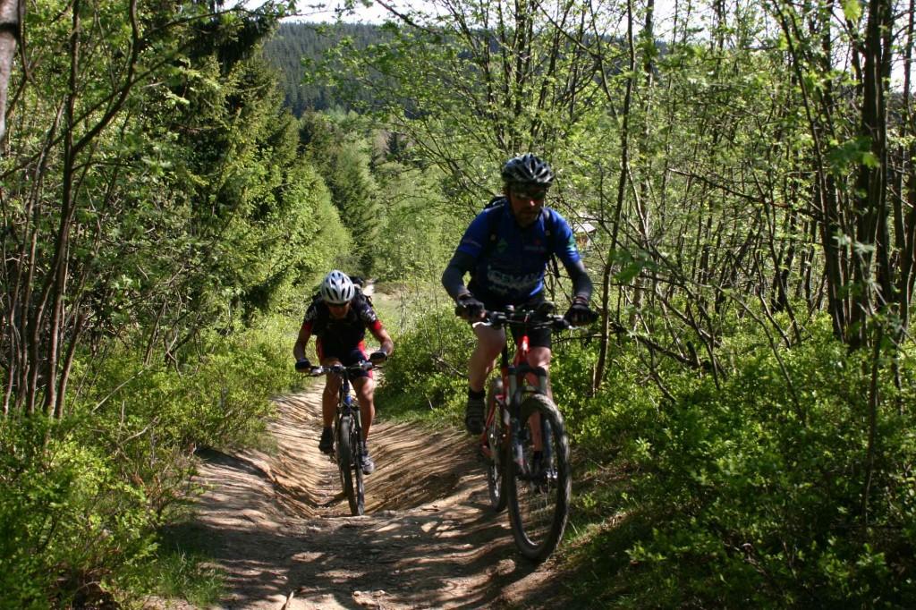 Trailpark Winterberg 2014