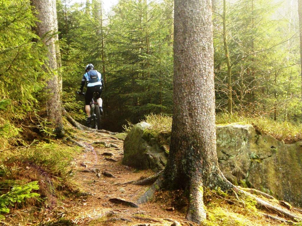 trailpark-winterberg-2014